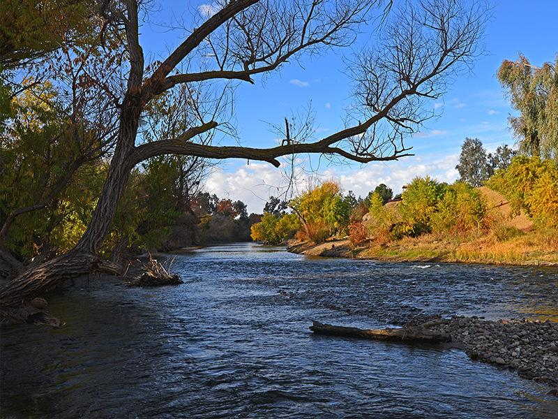 Kern River gently flows near Bakersfield, California, where future winters will likely be drier than expected, according to new research from PNNL scientists. (Photo by © Christian Richard Thornton | Shutterstock.com)