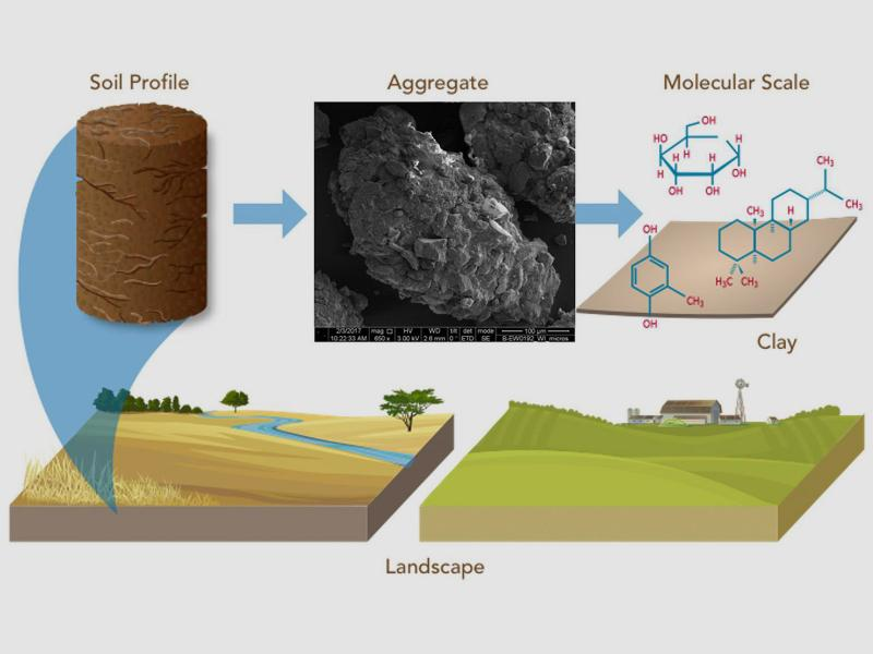 schematic of soil from different landscapes with different microscopic textures and molecular composition